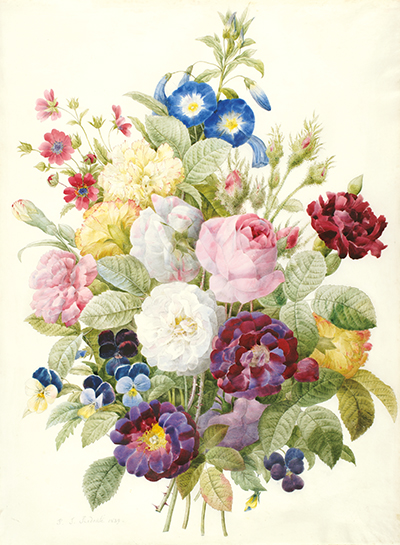 <p>[Bouquet of flowers], watercolor on vellum by Pierre-Joseph Redouté (1759–1840), 1839, HI Art accession no. 2202. This bouquet was painted by Redouté in his final year and was acquired by Rachel Hunt in the last year of her life, capping a history of collecting Redouté items one at a time over decades, including portraits and handwritten letters.</p>
