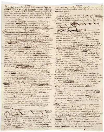 <p>The manuscript of most of Adanson's contributions to the <em>Supplément</em> of Diderot's <em>Encyclopédie</em>, [1776], Michel Adanson Library AD 293, HI Library.</p>