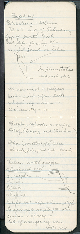 <p>Entry for 21 September 1938, Deciduous field notebook no. 8, HI Archives E. Lucy Braun collection no. 181. The Hunt Institute Archives holds over 80 of E. Lucy Braun's (1889–1971) field notebooks in which she recorded data that led to the publication of her <em>Deciduous Forests of Eastern North America</em> (Philadelphia, The Blakiston Company, 1950).</p>