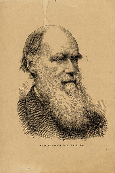 <p>Charles Robert Darwin (1809–1882), engraving by an unknown engraver, 20 × 14 cm, HI Archives portrait no. 4.</p>
