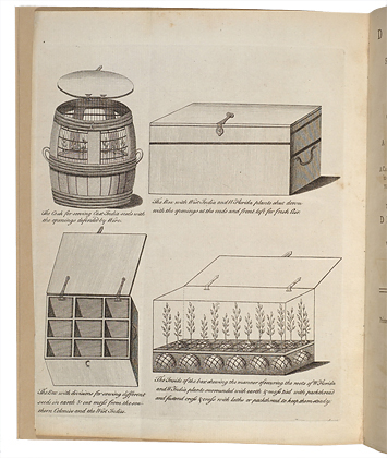 <p>[Examples of containers for transporting plants and seeds], engraving by an unknown engraver after an original by an unknown artist for John Ellis, <em>Directions for Bringing over Seeds and Plants</em> (London, printed and sold by L. Davis, 1770, frontispiece), HI Library call no. MC1 E47D.</p>