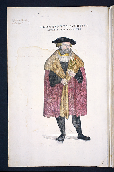 <p>Leonhart Fuchs (1501–1566), age 41, hand-colored woodcut by Viet Rudolph Speckle (fl.1542) after an original attributed to Heinrich Füllmaurer (fl.1542) for Leonhart Fuchs (1501–1566), <em>De Historia Stirpium Commentarii Insignes ...</em> (Basel, In officina Isingriniana, 1542, title page verso), HI Archives portrait no. 6b and HI Library call no. +CA F951h.</p>