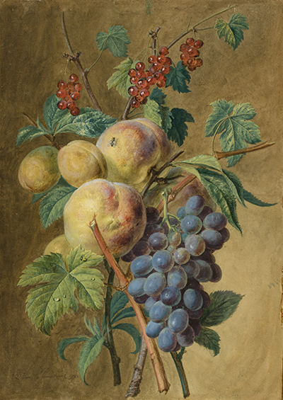 <p>Grappe de fruits, gouache on paper by Gérard van Spaendonck (1746–1822), 1781, 38 × 27 cm, HI Art accession no. 0001.</p>