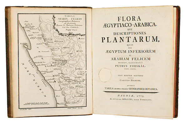 <p>Frontispiece and title page of Linnaeus apostle Forsskal's most significant botanical work, published after his death by fellow explorer Carsten Niebuhr (1733–1815), for Peter Forsskal (1732–1763), <em>Flora Aegypiaco-Arabica</em> (Copenhagen, Ex officina Mölleri, 1775), Strandell Collection of Linnaeana no. 2110, HI Library.</p>