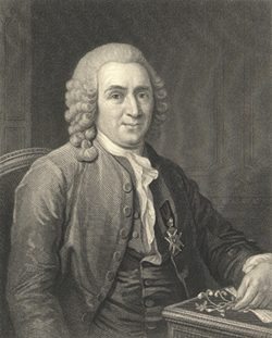 <p>Carolus Linnaeus (1707–1778), engraving by C. E. Wagstaff after an oil painting by L. Pasch after an original by A. Roslin, 1775, at the Royal Swedish Academy of Sciences, Stockholm, for John Eadie (1810–1876) and John Francis Waller (1810–1894), <em>The Imperial Dictionary of Universal Biography: A Series of Original Memoirs of Distinguished Men of All Ages and All Nations</em> (London, W. Mackenzie, 1857, vol. 3, after p. 206), HI Archives portrait no. 20 and HI Library call no. L15 I34.</p>